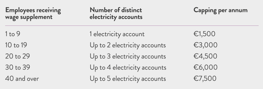 Electricity Support Scheme 2021 capping